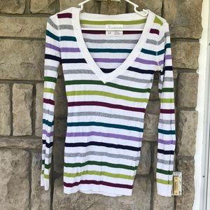 Aeropostale V neck sweater with jewel tone stripes